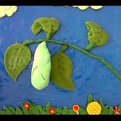 Claymation: Life Cycle