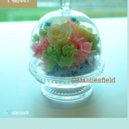 Bunny Dome- Preserved Flower Arrangement
