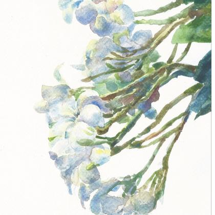 Watercolour Painting Trial Session (For 10 Sessions course)