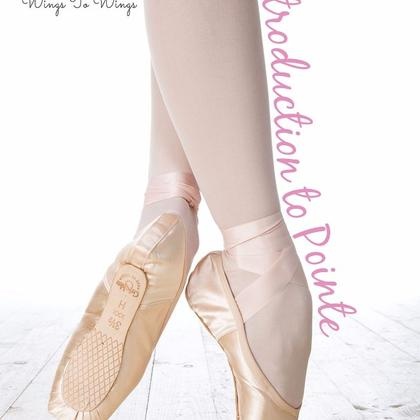 Introduction to pointe