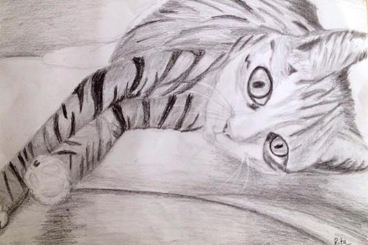Drawing Classes For Adults 56