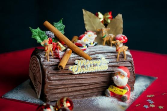 Beautiful Christmas Log Cake - Cake Baking Classes in Singapore - LessonsGoWhere