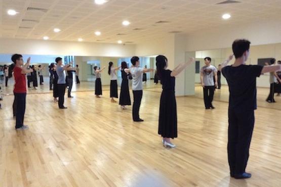 Standard Ballroom Dancing Beginners Course Ballroom