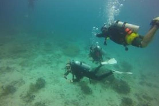 The Dive Company Singapore Map Tourist Attractions in Singapore – Pa Tourist Attractions Map